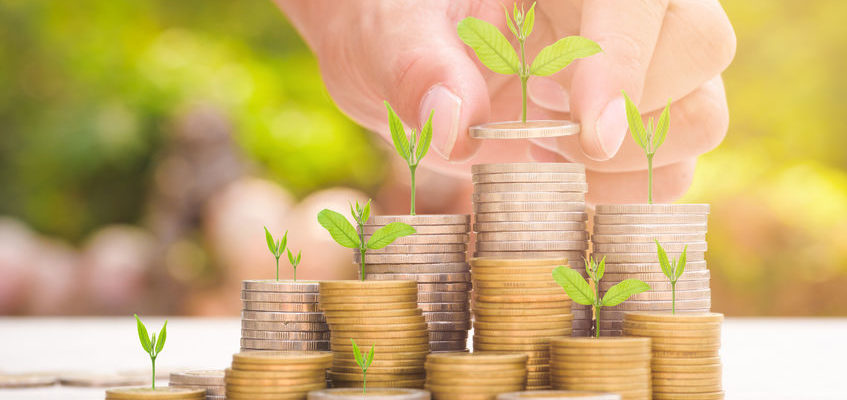 Assurance vie et private equity